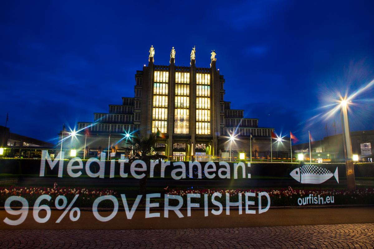 Mediterranean: 96 Overfished