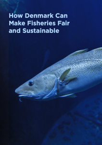 How Denmark Can Make Fisheries Fair and Sustainable