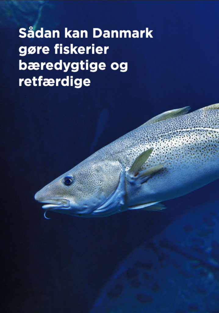 Sådan kan Danmark gøre fiskerier bæredygtige og retfærdige