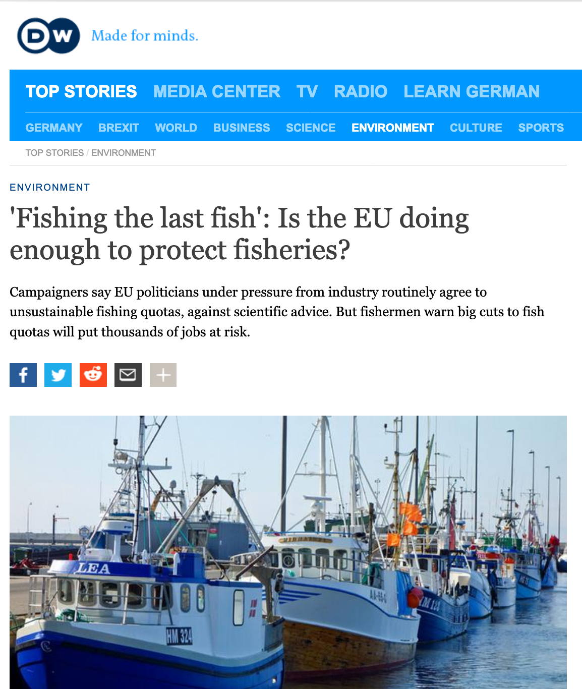 'Fishing the last fish': Is the EU doing enough to protect fisheries?