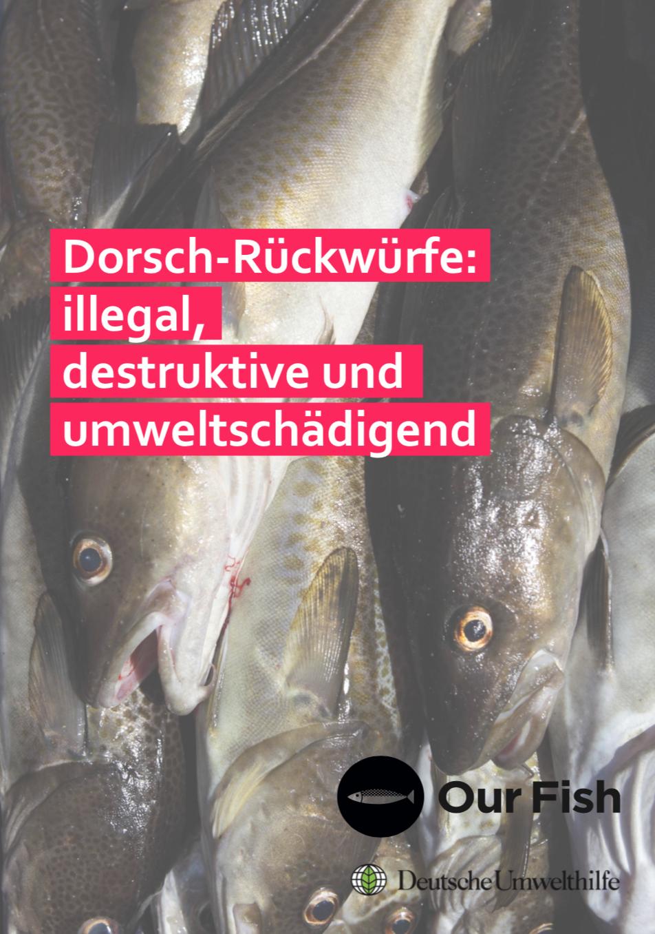 Dorsch-Rückwürfe: illegal, destruktive und umweltschädigend