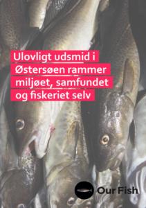 Ulovligt udsmid i Østersøen rammer miljøet, samfundet og fiskeriet selv