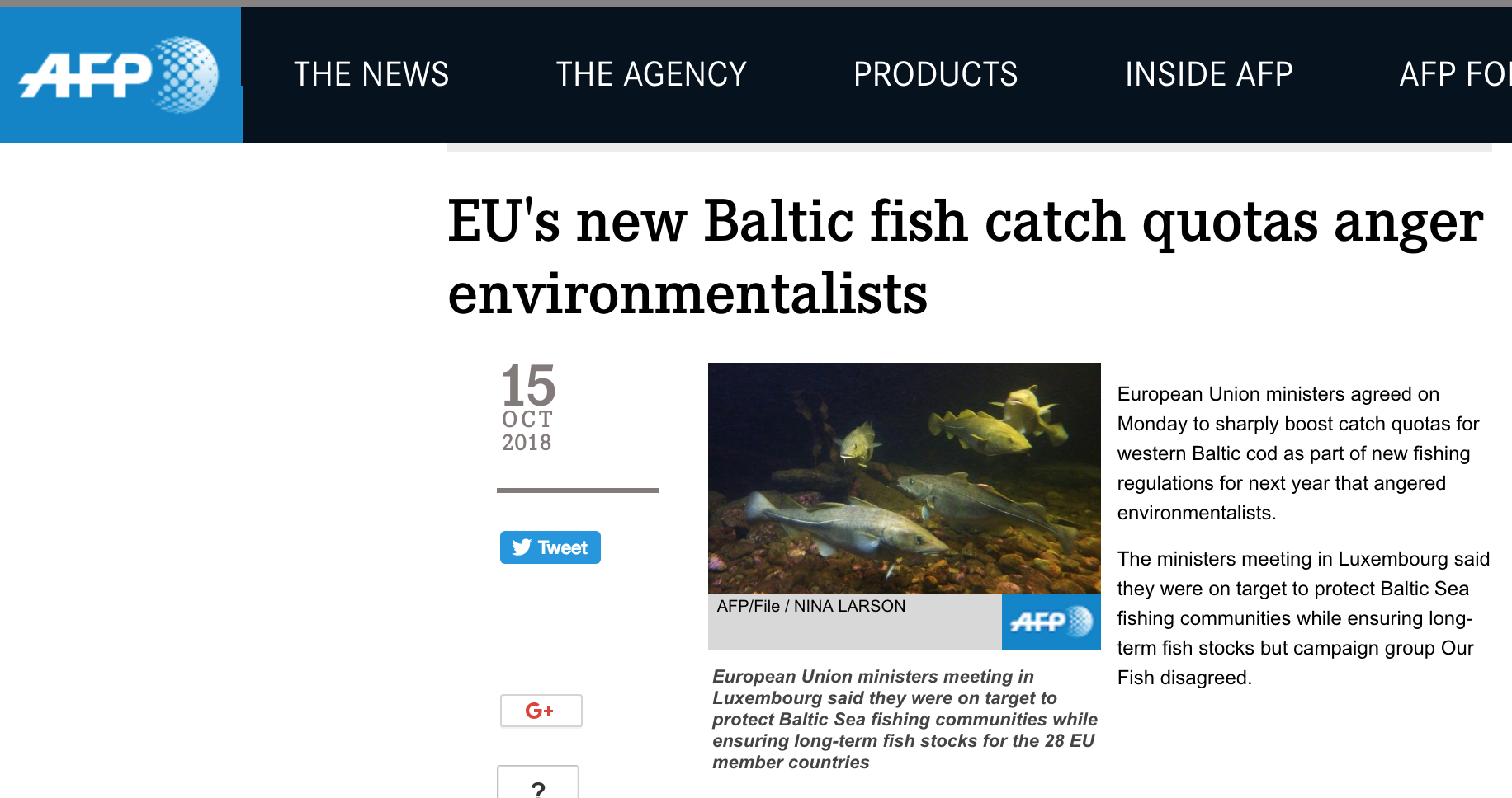 EU's new Baltic fish catch quotas anger environmentalists