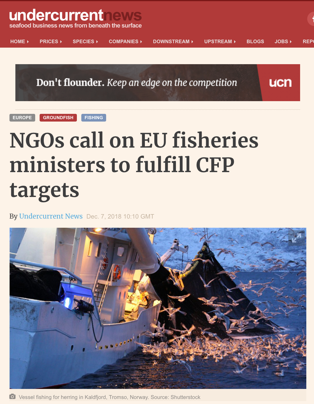 Undercurrent: NGOs call on EU fisheries ministers to fulfill CFP targets