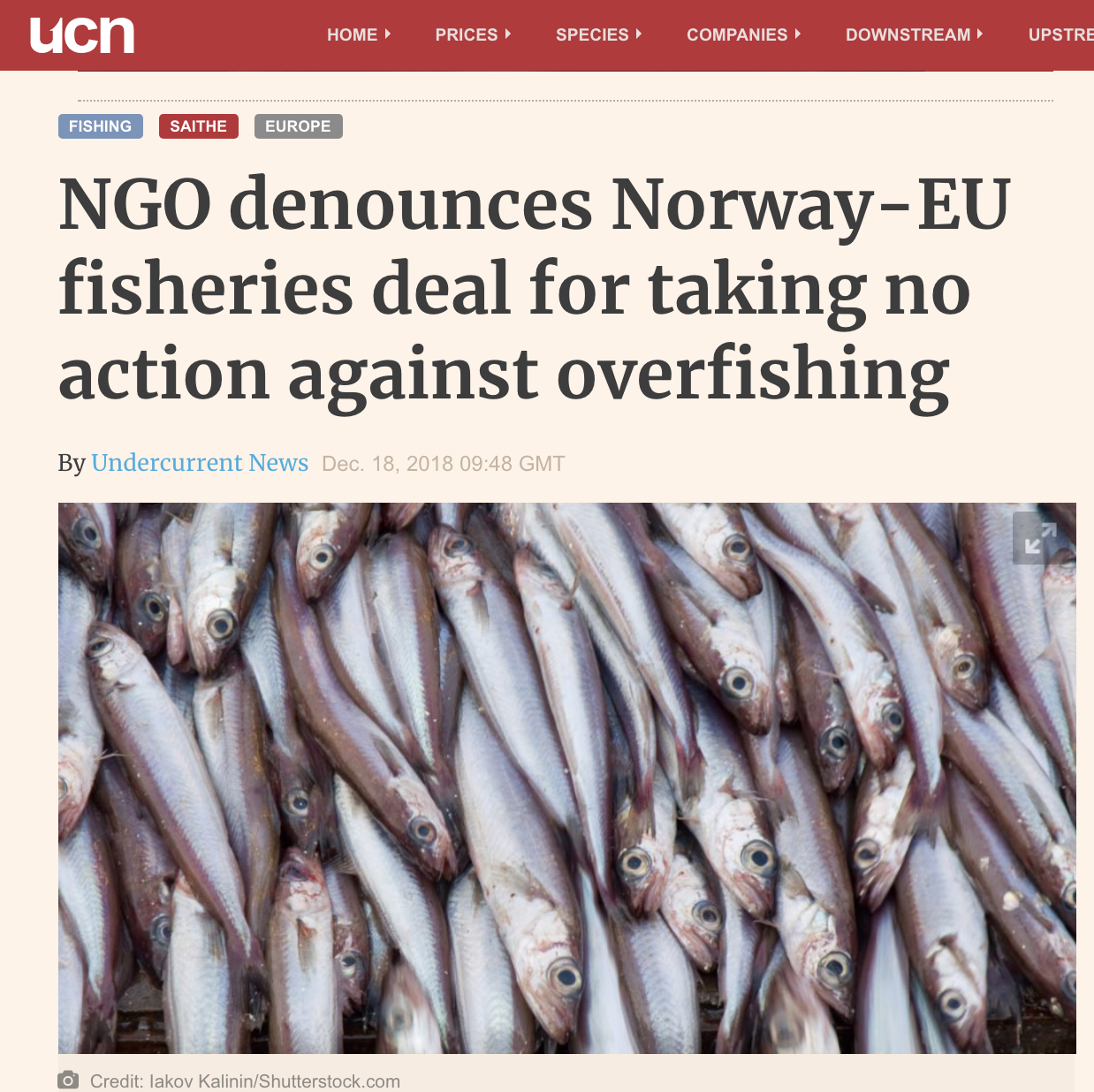 NGO denounces Norway-EU fisheries deal for taking no action against overfishing