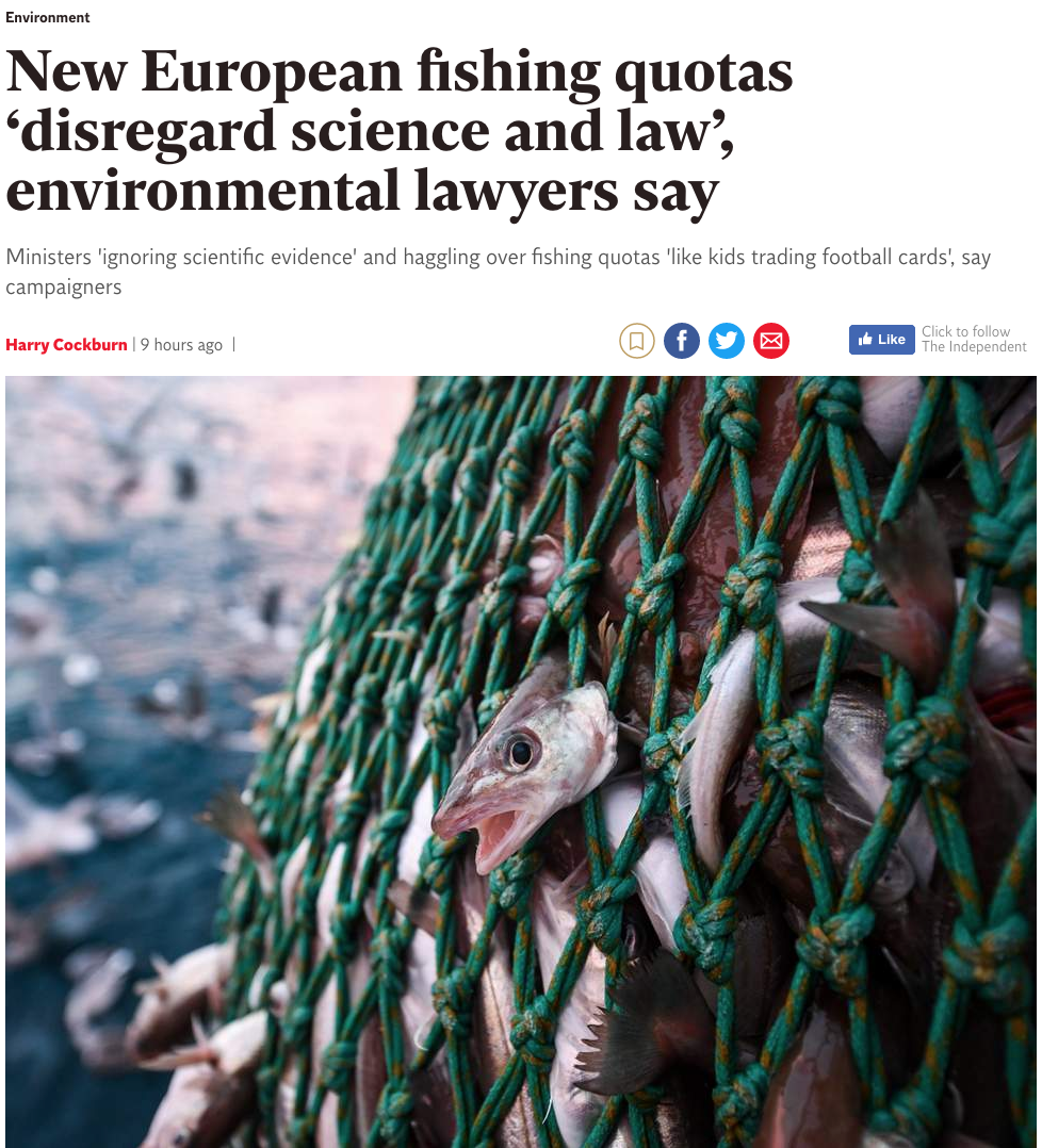 New European fishing quotas 'disregard science and law', environmental lawyers say