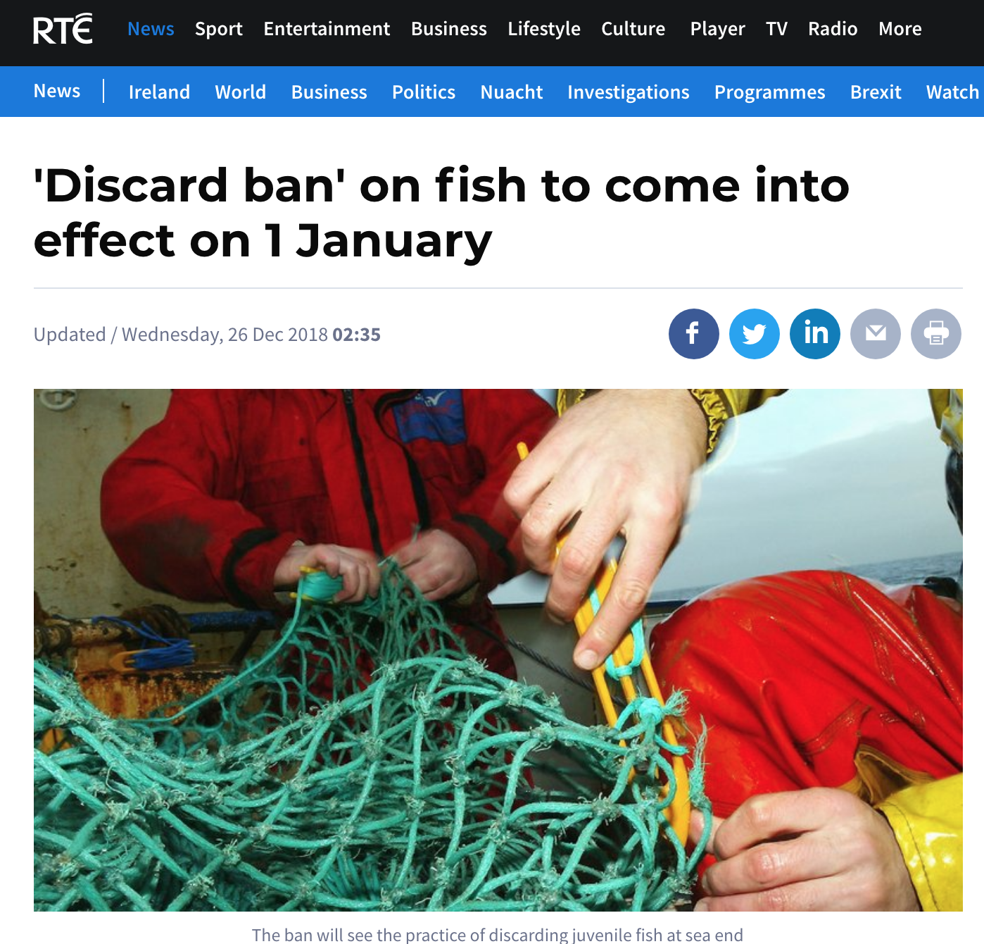 'Discard ban' on fish to come into effect on 1 January