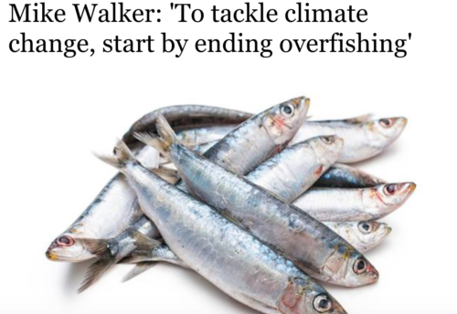 Mike Walker: 'To tackle climate change, start by ending overfishing'