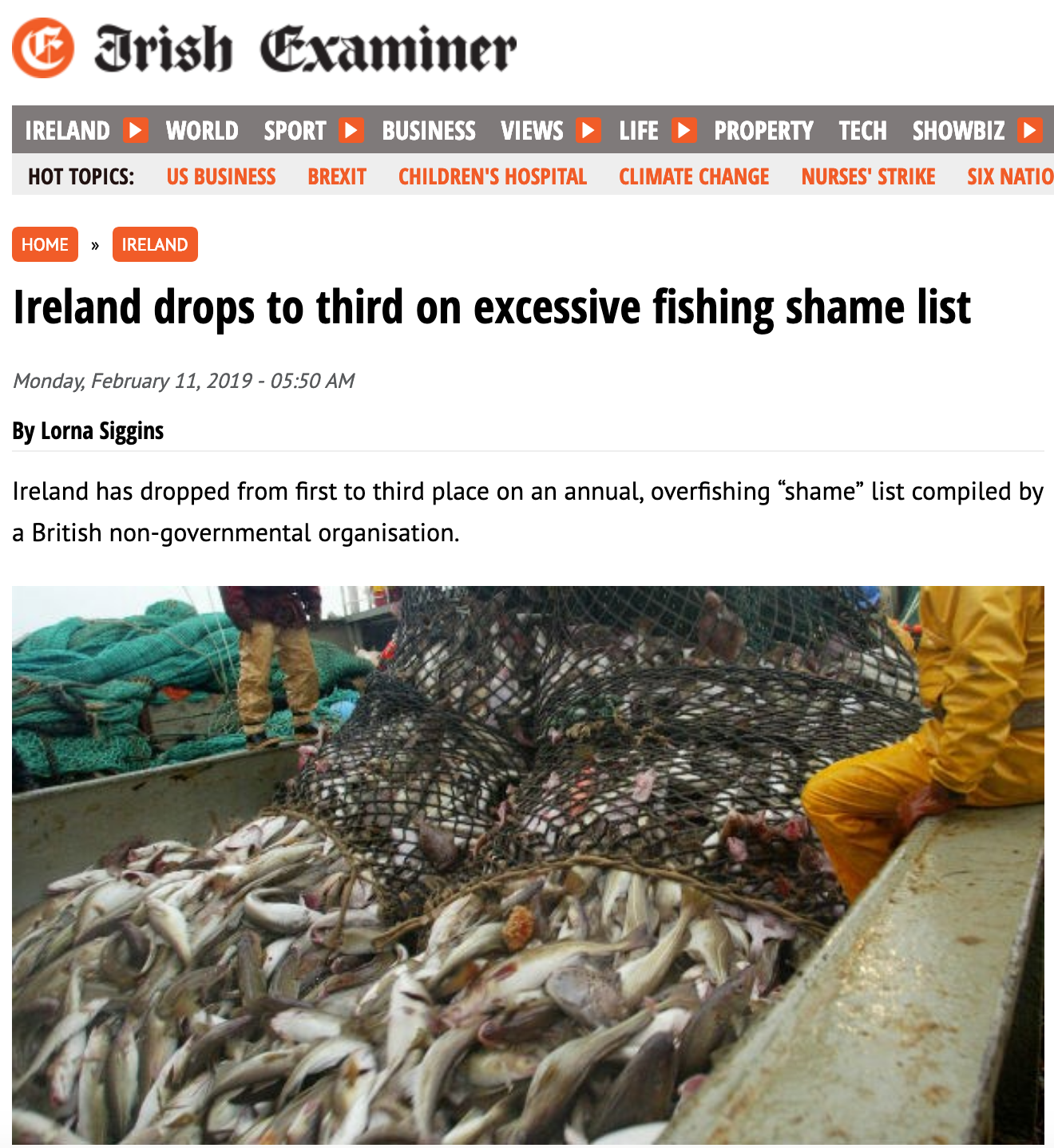 Irish Examiner: Ireland drops to third on excessive fishing shame list