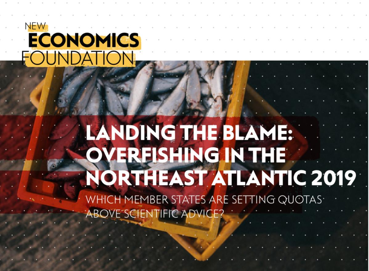 Landing the Blame 2019