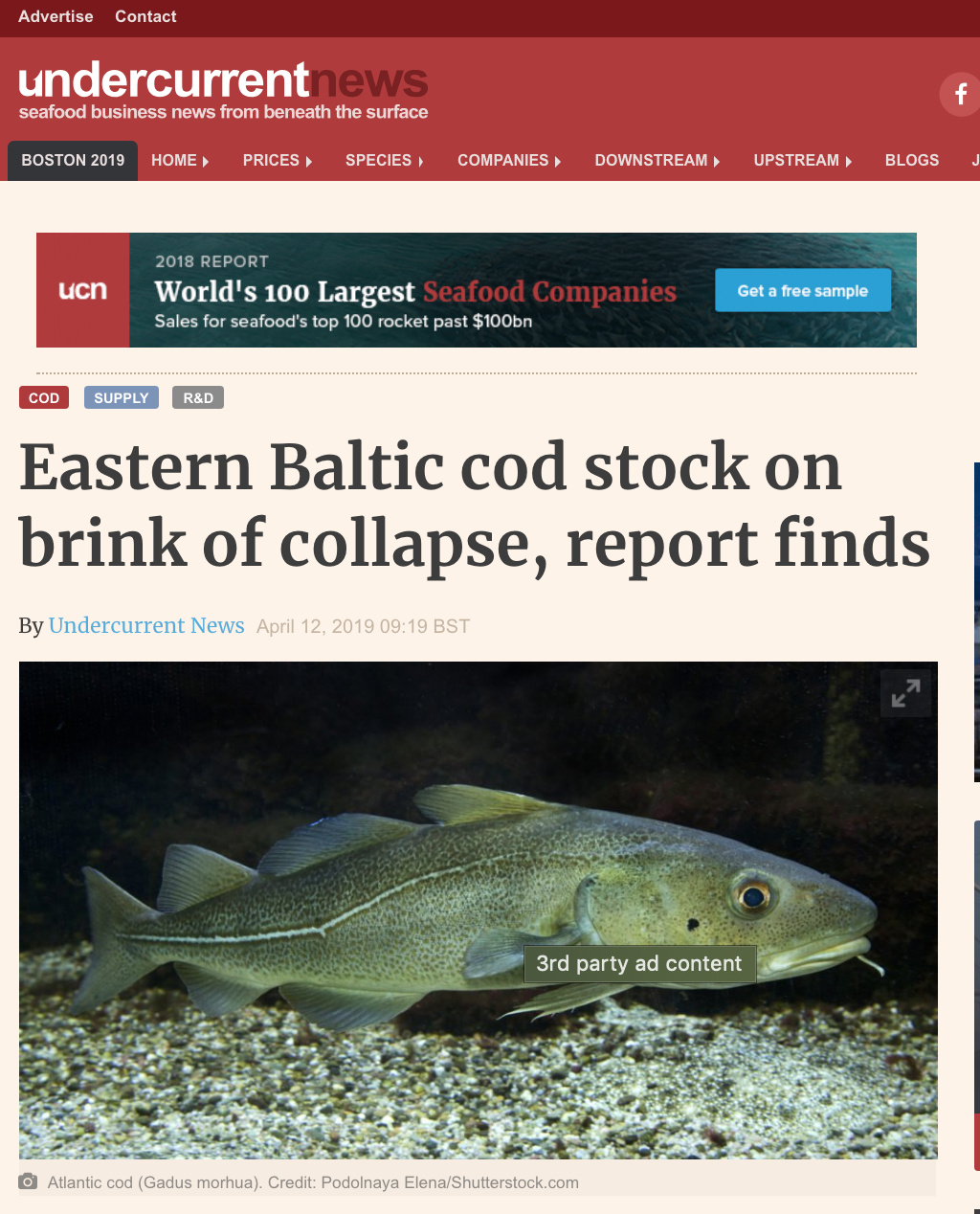 """Eastern Baltic cod stock on brink of collapse, report finds """