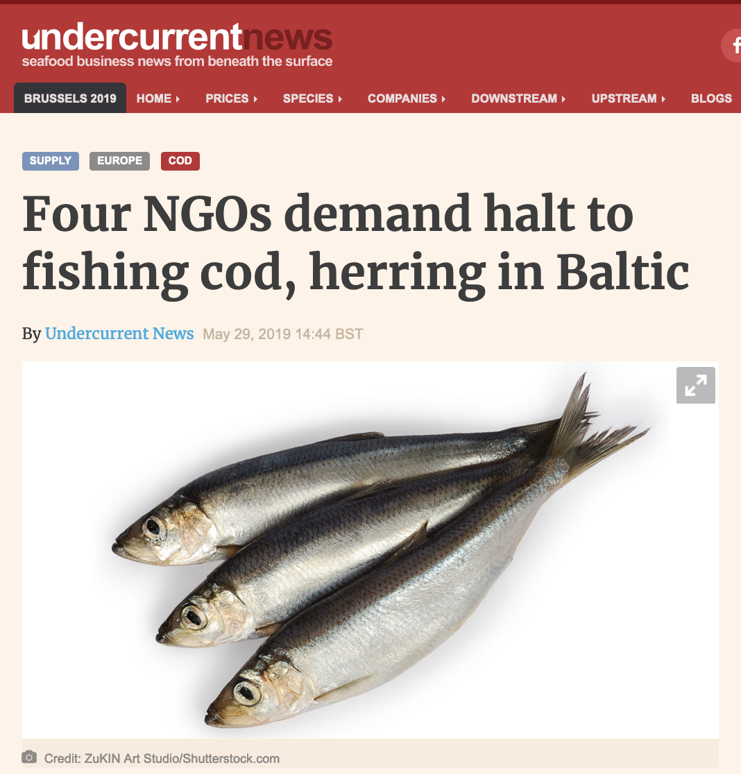 Four NGOs demand halt to fishing cod, herring in Baltic
