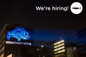 Our Fish: We're Hiring Image