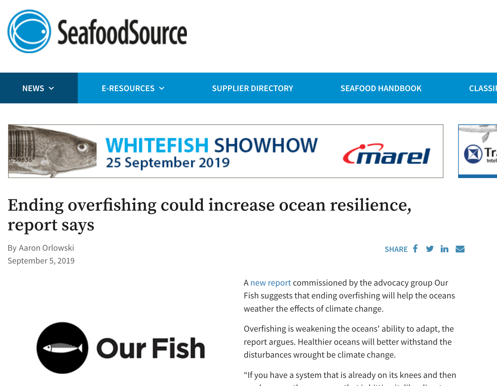 Ending overfishing could increase ocean resilience, report says
