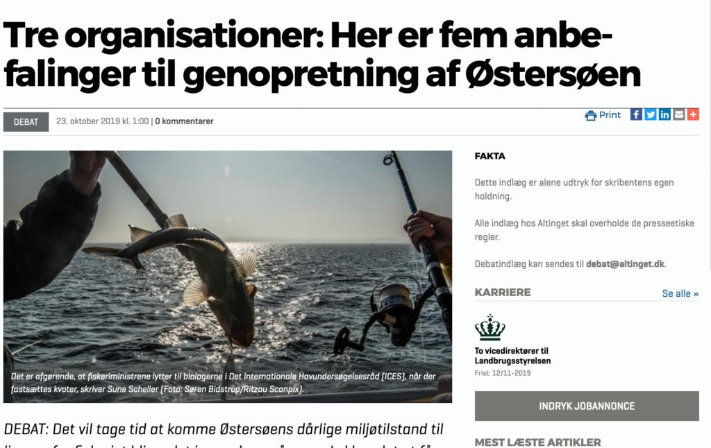 Tre organisationer: Her er fem anbefalinger til genopretning af Østersøen