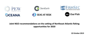 Joint NGO recommendations on the setting of Northeast Atlantic fishing opportunities for 2020