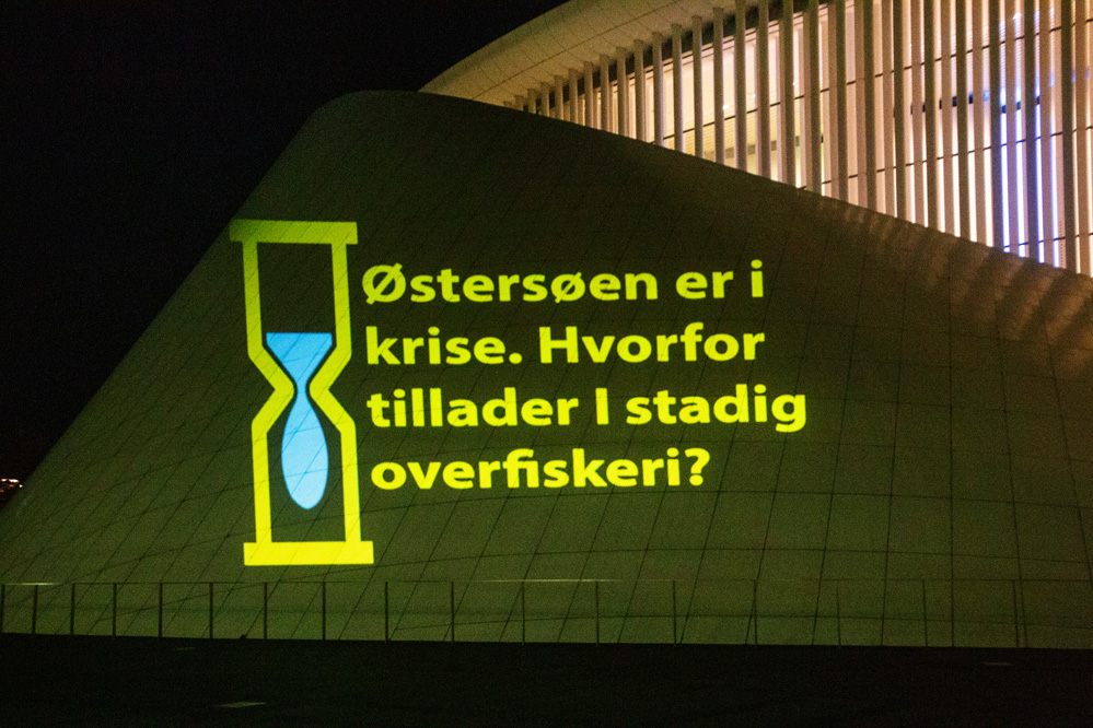 Østersøen er i krise. Hvorfor tillader I stadig overfiskeri?