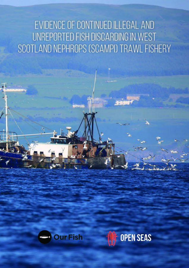 Evidence of continued illegal and unreported fish discarding IN WEST SCOTLAND NEPHROPS (SCAMPI) TRAWL FISHER