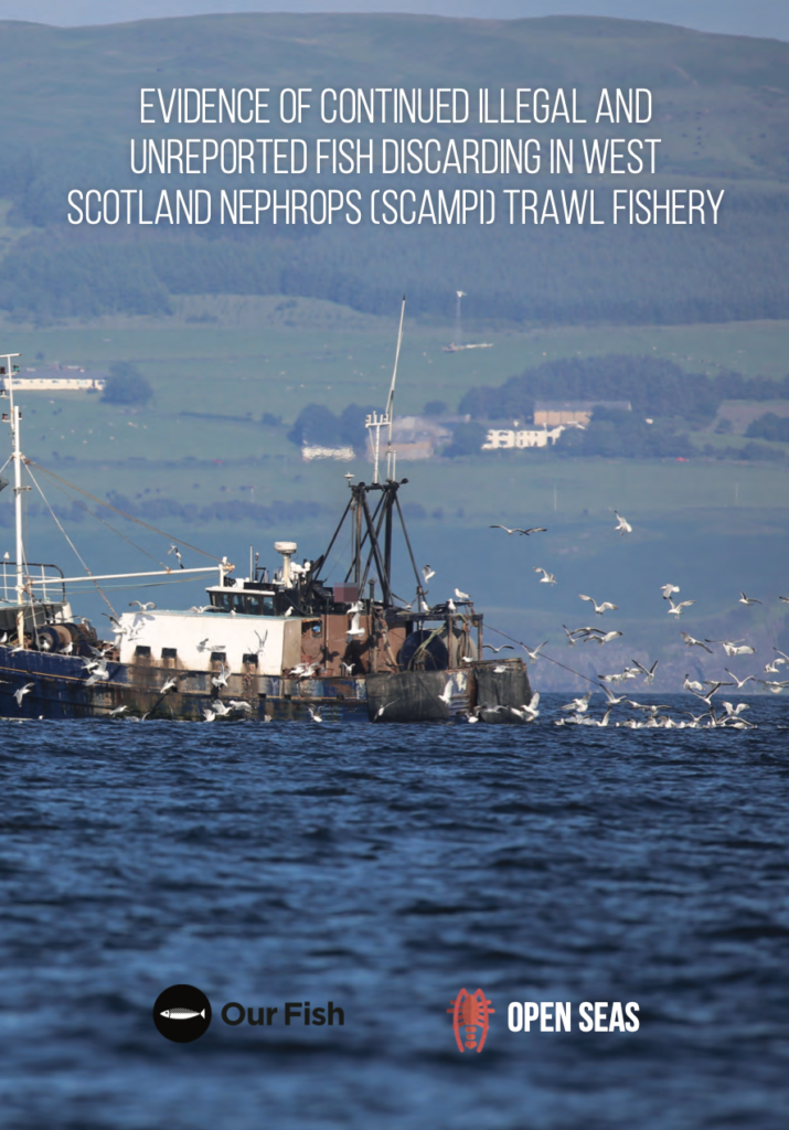 Evidence of Continued Illegal and Unreported Fish Discarding in West Scotland Nephrops (Scampi) Trawl Fishery