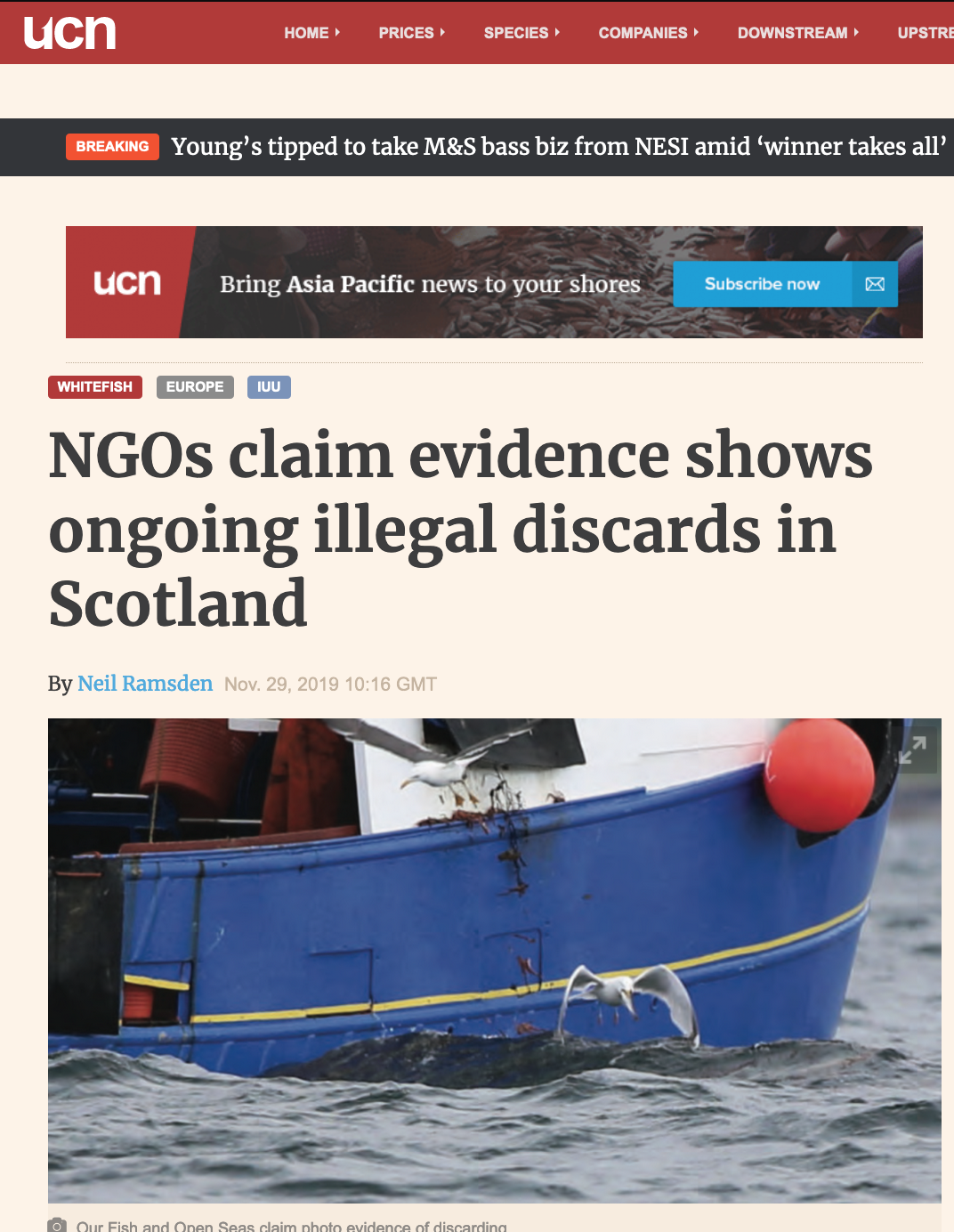 NGOs claim evidence shows ongoing illegal discards in Scotland
