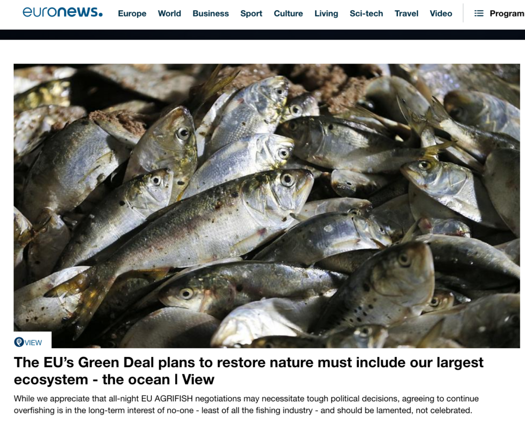 The EU's Green Deal plans to restore nature must include our largest ecosystem - the ocean ǀ View
