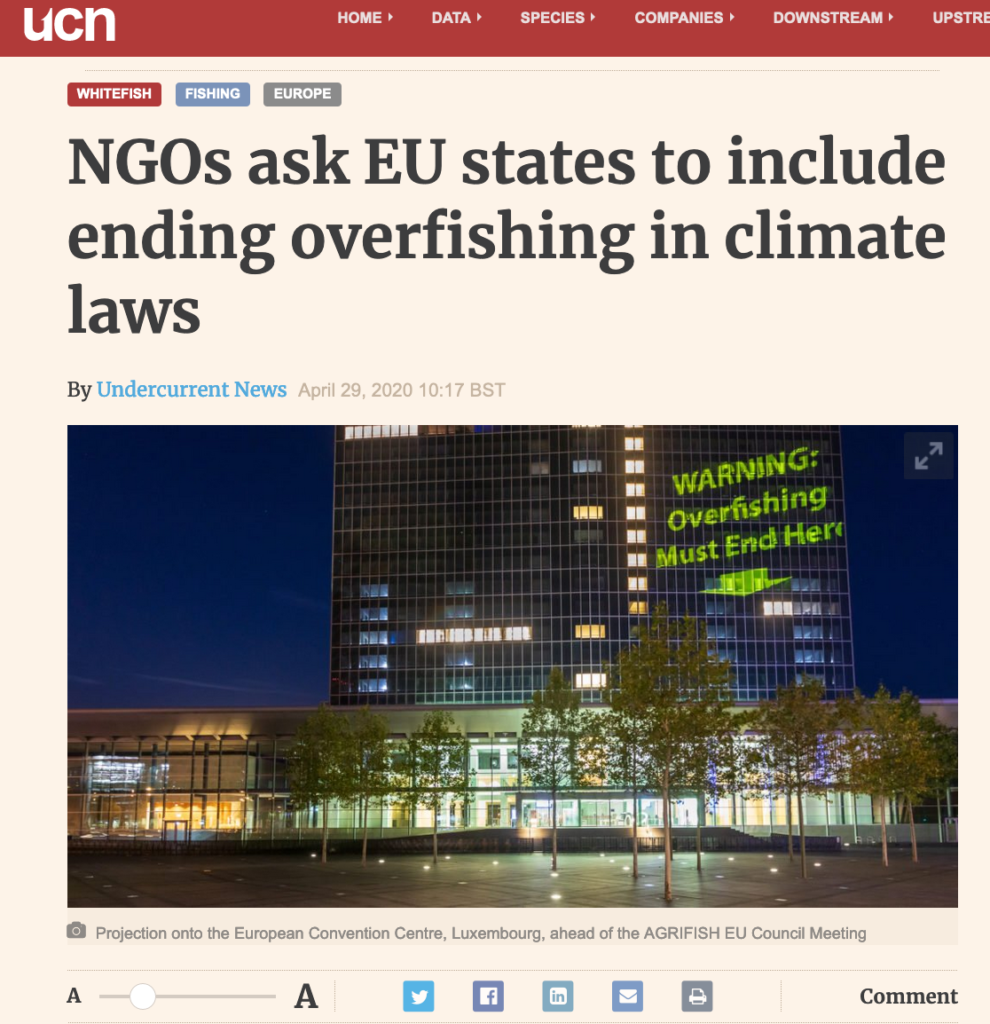 NGOs ask EU states to include ending overfishing in climate laws