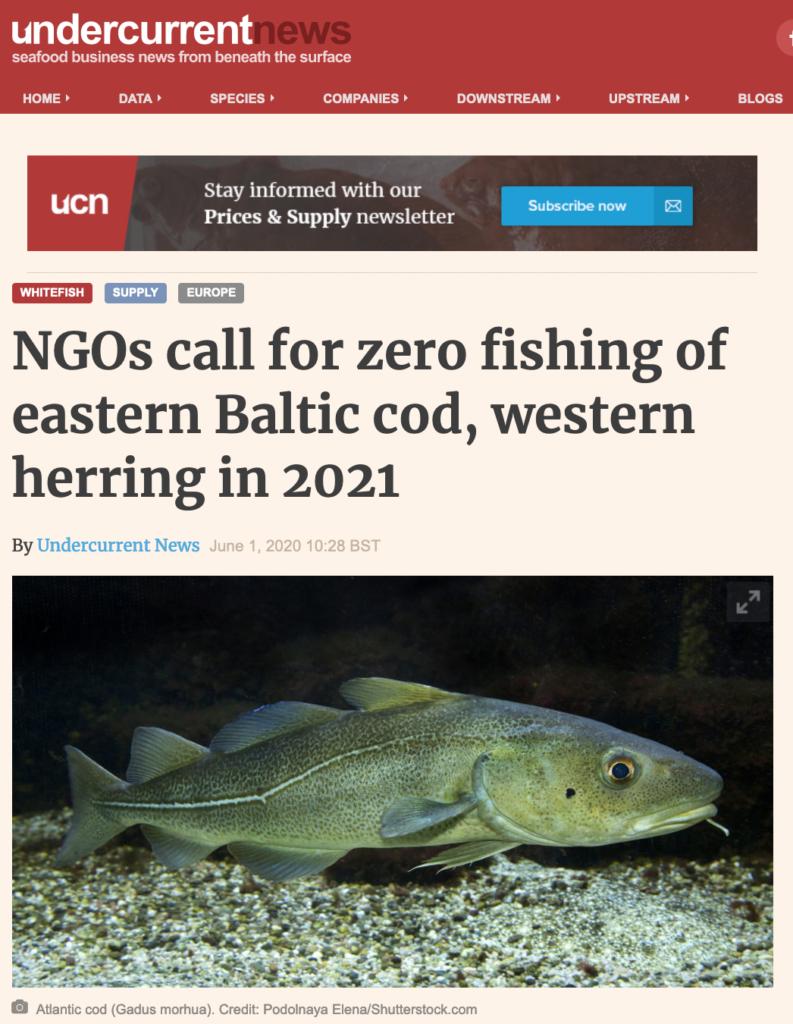 NGOs call for zero fishing of eastern Baltic cod, western herring in 2021