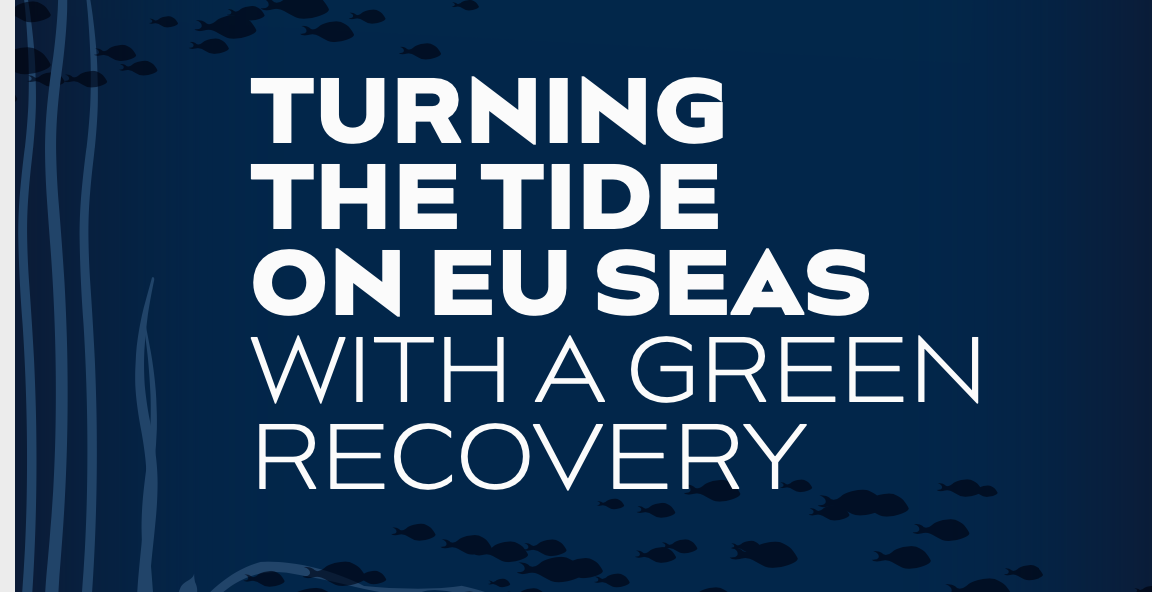 Turning the Tide on EU Seas with a Green Recovery