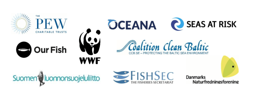 Joint NGO recommendations on Baltic Sea fishing opportunities for 2021