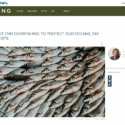 EU must end overfishing to protect our oceans, say scientists