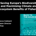 Press Briefing: Saving Europe's Biodiversity Starts in the Ocean - Report launch & response to EU Parliament Draft Report