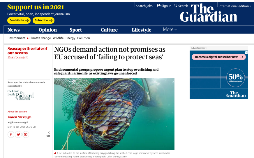 NGOs demand action not promises as EU accused of 'failing to protect seas'