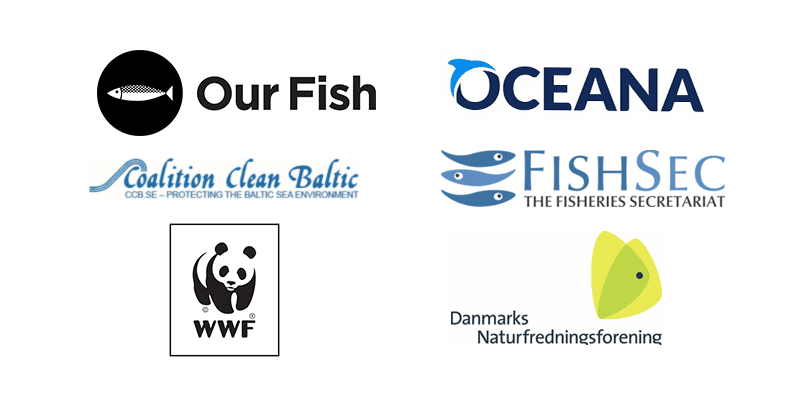EU Must Respond to Baltic Sea Ecosystem and Fisheries Crash With Urgent, Radical Measures